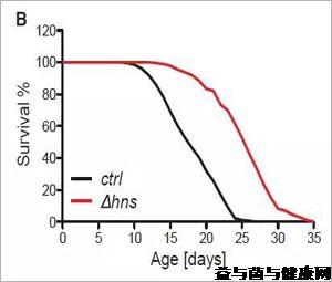 Cell:肠道菌群突变可延长动物寿命?
