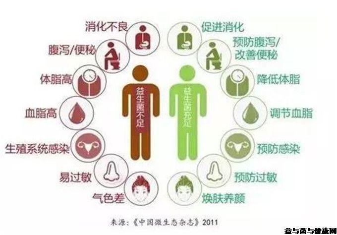 益生菌适合哪些人群