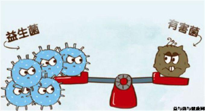 肠道菌群的重要性及肠道修复的原则与方法