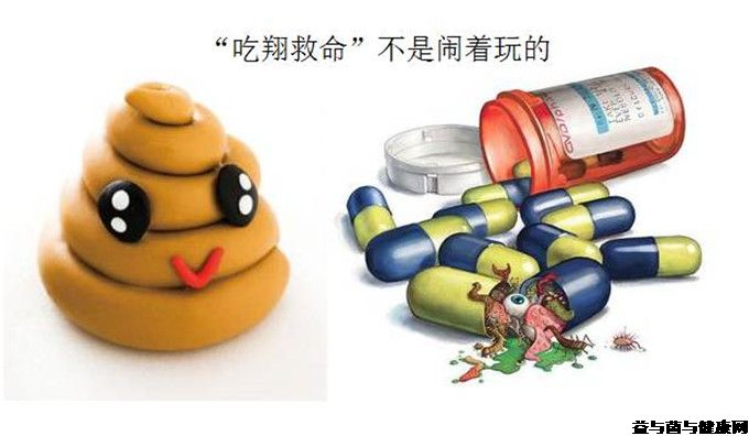 肠道微生物研究入门必看:神奇菌群有哪些?