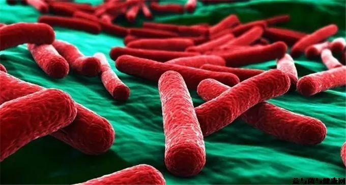 什么是真菌性腹泻